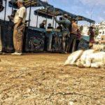 DISUMANA STRAGE DI CANI RANDAGI IN MAROCCO