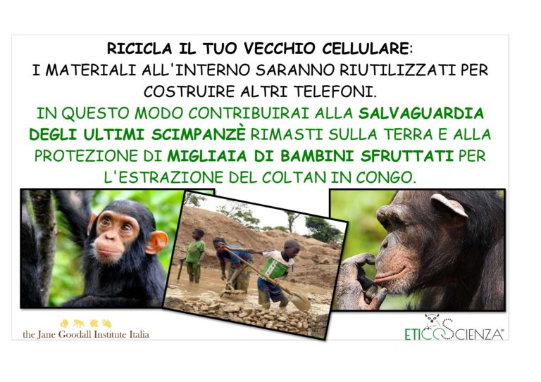 JANE GOODALL INS ITALIA - CELL 1.1_page-0001