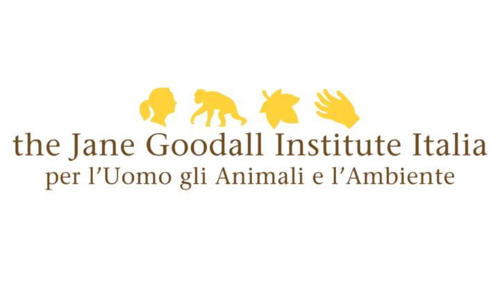 Logo_4.3_-1024x768