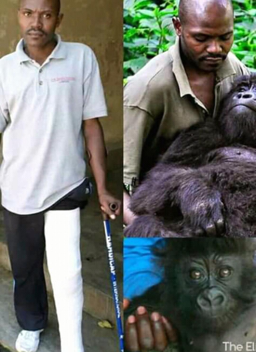 ranger gorilla virunga - eticoscienza